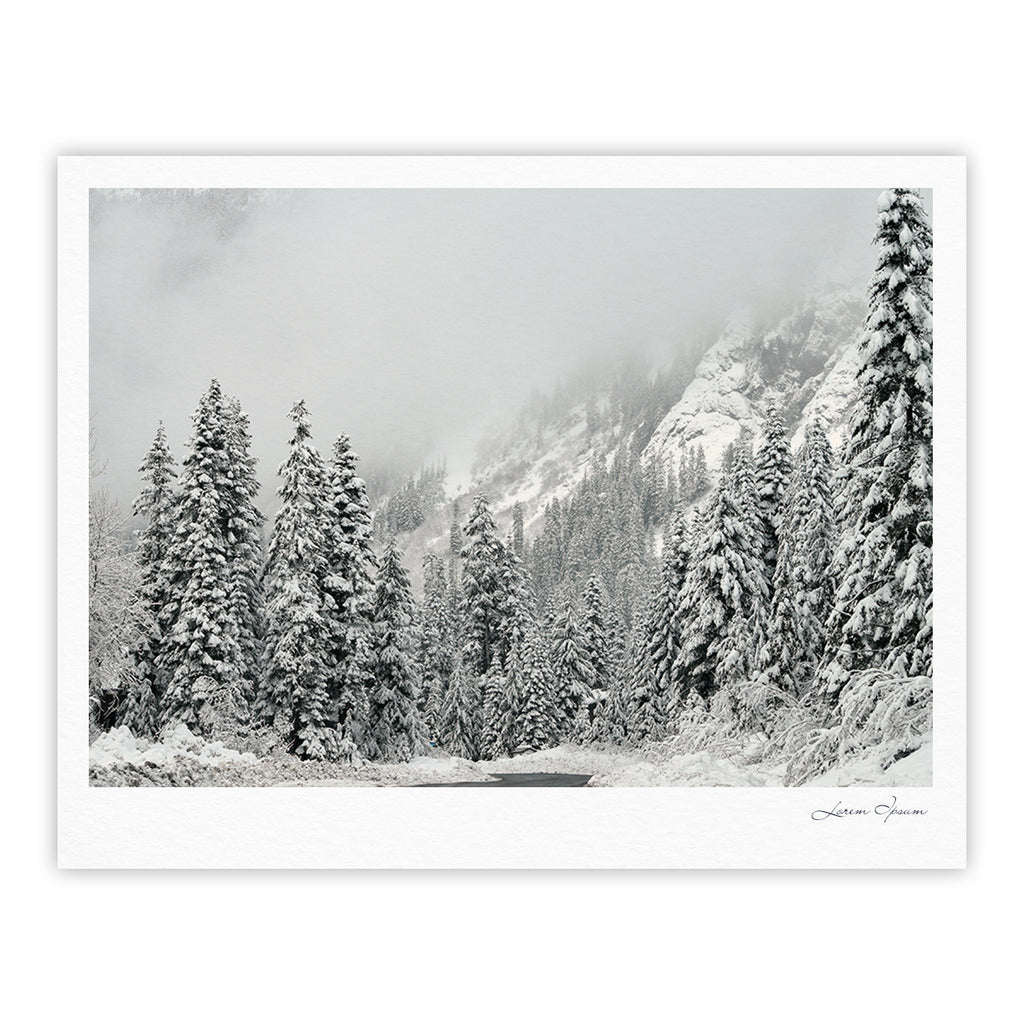 "Robin Dickinson ""Winter Wonderland"" White Gray Fine Art Gallery Print - KESS InHouse"