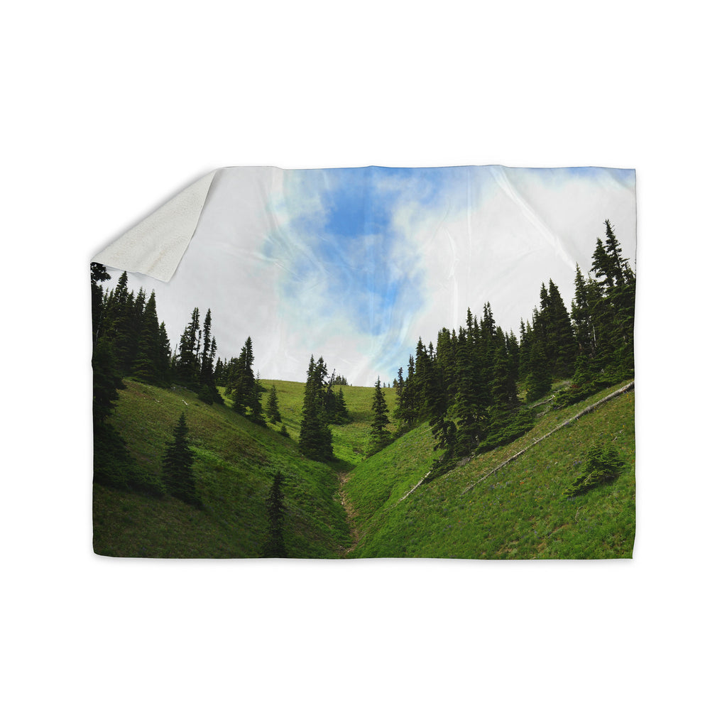 "Robin Dickinson ""Going to the Mountains"" Green Blue Sherpa Blanket - KESS InHouse  - 1"