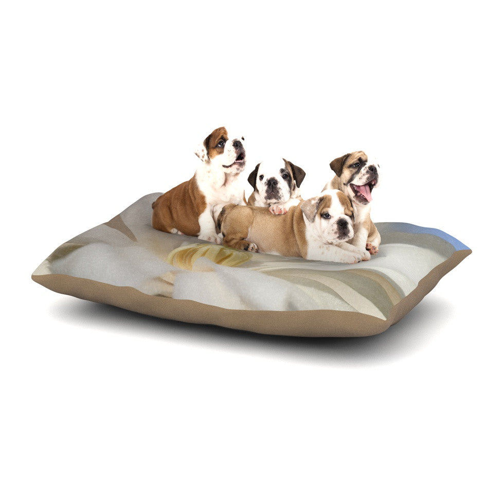 "Robin Dickinson ""First Signs"" White Floral Dog Bed - KESS InHouse  - 1"