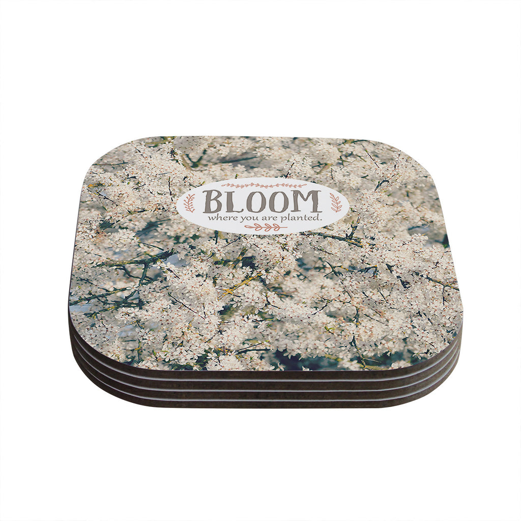 "Robin Dickinson ""Bloom Where You Are Planted"" White Floral Coasters (Set of 4)"