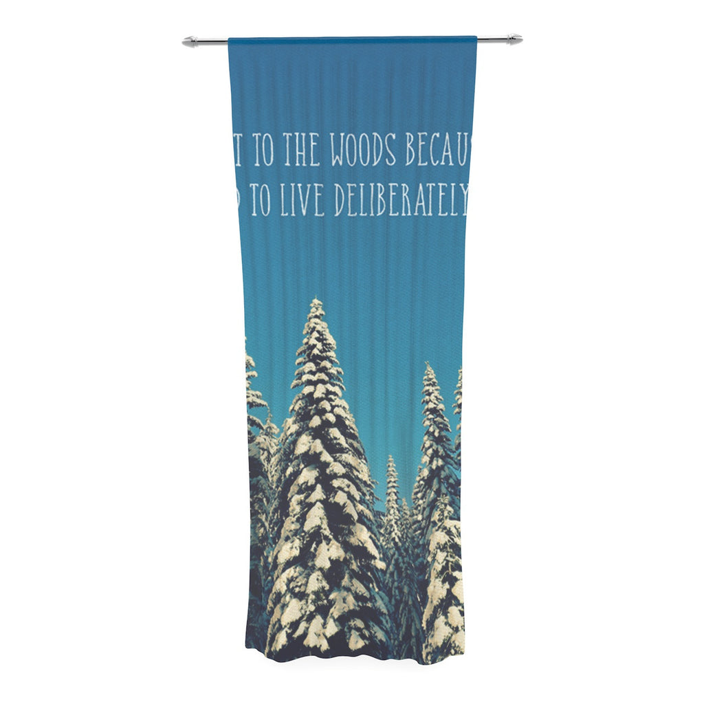 "Robin Dickinson ""I Went to the Woods"" Blue White Decorative Sheer Curtain - KESS InHouse  - 1"