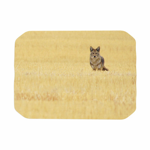 "Robin Dickinson ""Mischief"" Gold Beige Animals Nature Digital Photography Place Mat"