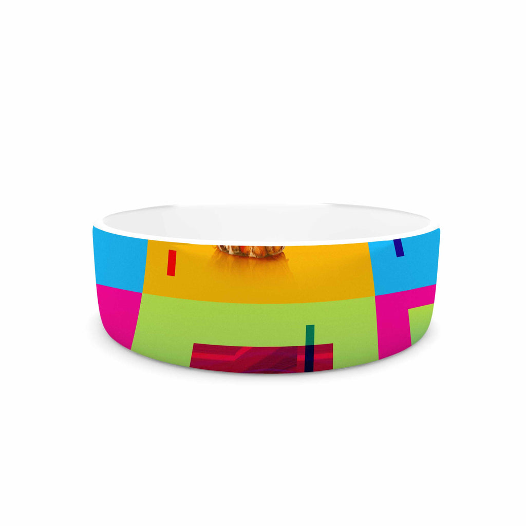 "Roberlan ""Triptic"" Blue Pink Abstract Pop Art Pet Bowl"