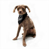 "BarmalisiRTB ""For The Good Time"" Black White Illustration Pet Bandana"