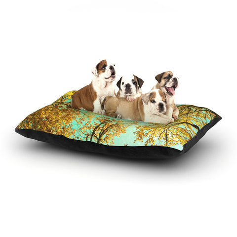 "Sylvia Cook ""Vantage Point"" Dog Bed - KESS InHouse  - 1"