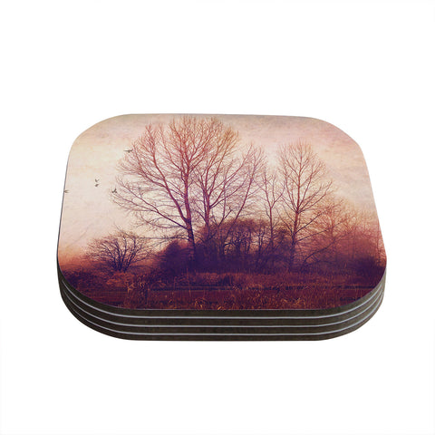 "Sylvia Cook ""Explore"" Coasters (Set of 4)"