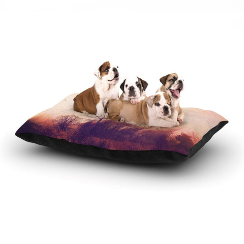 "Sylvia Cook ""Explore"" Dog Bed - KESS InHouse  - 1"
