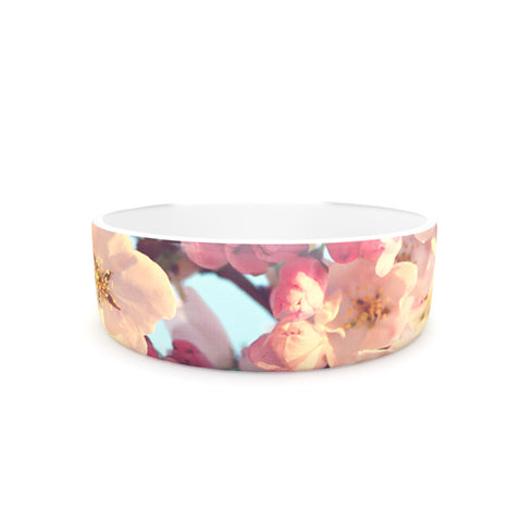 "Sylvia Cook ""Waiting for Spring"" Pink Blue Pet Bowl - KESS InHouse"