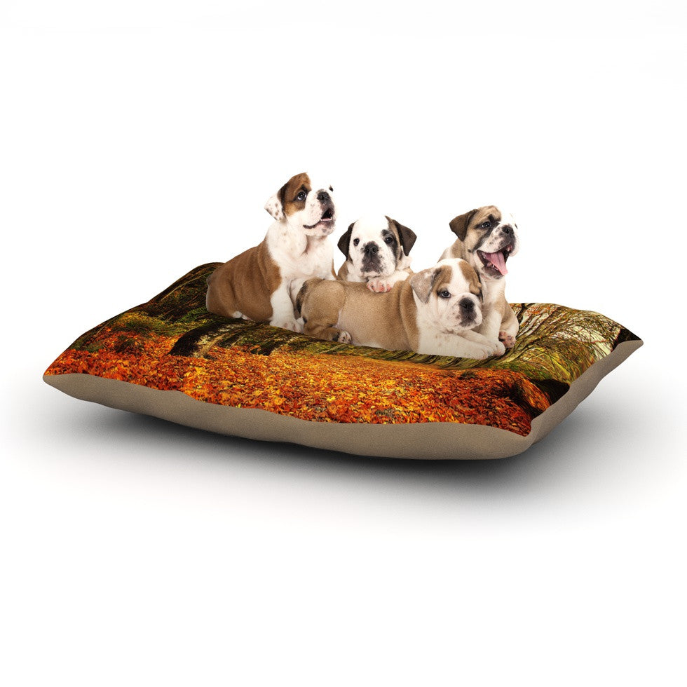 "Sylvia Cook ""Autumn Leaves"" Rustic Dog Bed - KESS InHouse  - 1"
