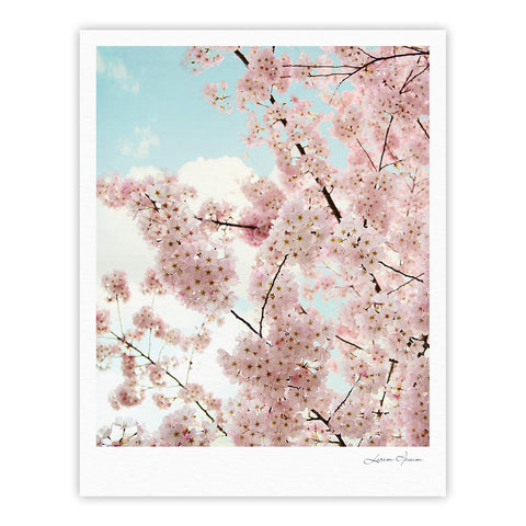 "Sylvia Cook ""Spring Beauty"" Pink Blue Fine Art Gallery Print - KESS InHouse"