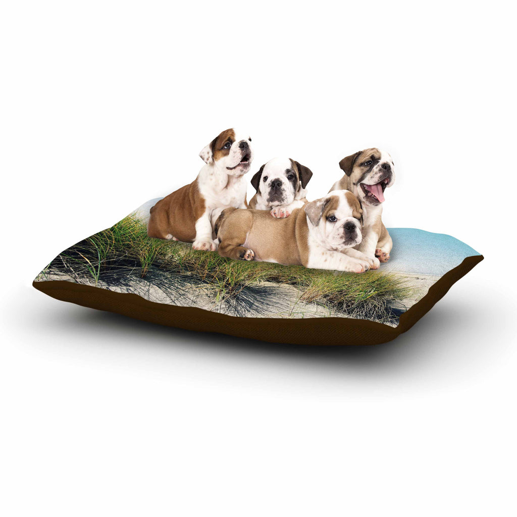 "Sylvia Cook ""Dune Grass"" Coastal Photography Dog Bed - KESS InHouse  - 1"