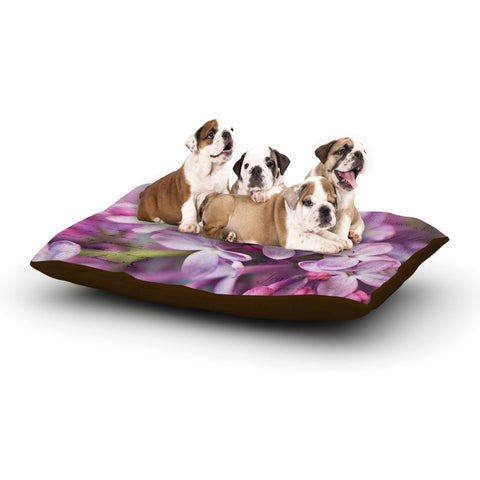 "Sylvia Cook ""French Lilacs"" Purple Photography Dog Bed - KESS InHouse  - 1"