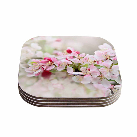 "Sylvia Cook ""April Flowers"" Pink White Coasters (Set of 4)"