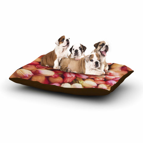 "Sylvia Cook ""Tulips"" Orange Yellow Photography Dog Bed"