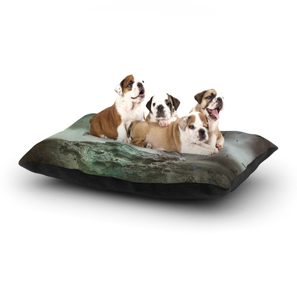 "Suzanne Carter ""Umbrella Bird"" Dog Bed - KESS InHouse  - 1"
