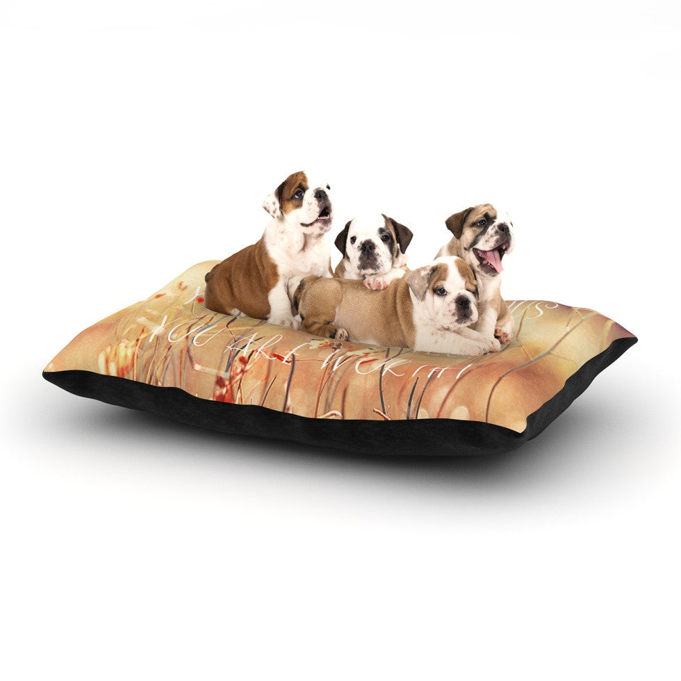 "Suzanne Carter ""You are Precious"" Quote Dog Bed - KESS InHouse  - 1"