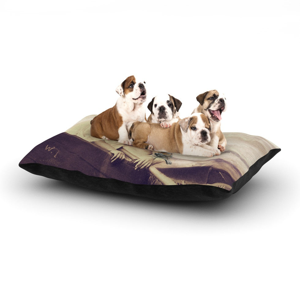 "Suzanne Carter ""Journey"" Tan Dog Bed - KESS InHouse  - 1"