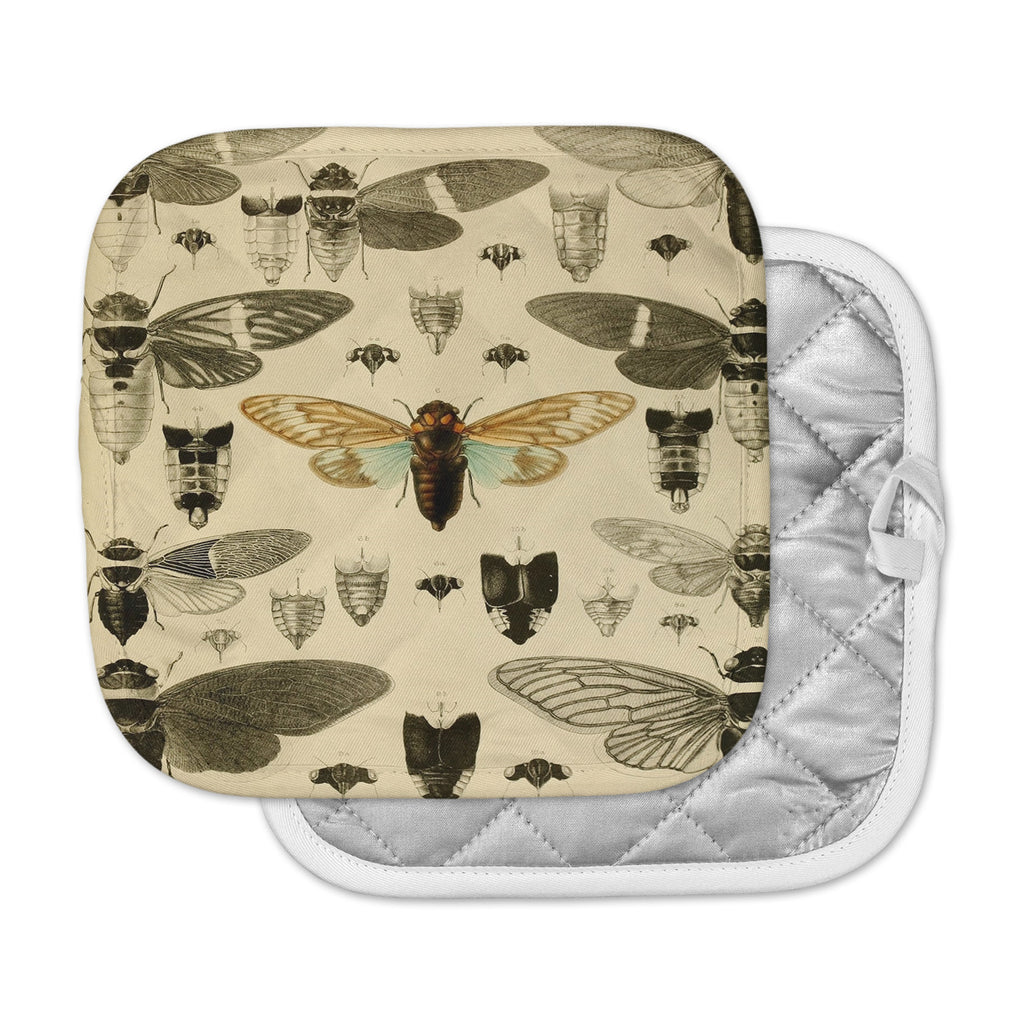 "Suzanne Carter ""Vintage Cicada"" Bugs Pattern Pot Holder"