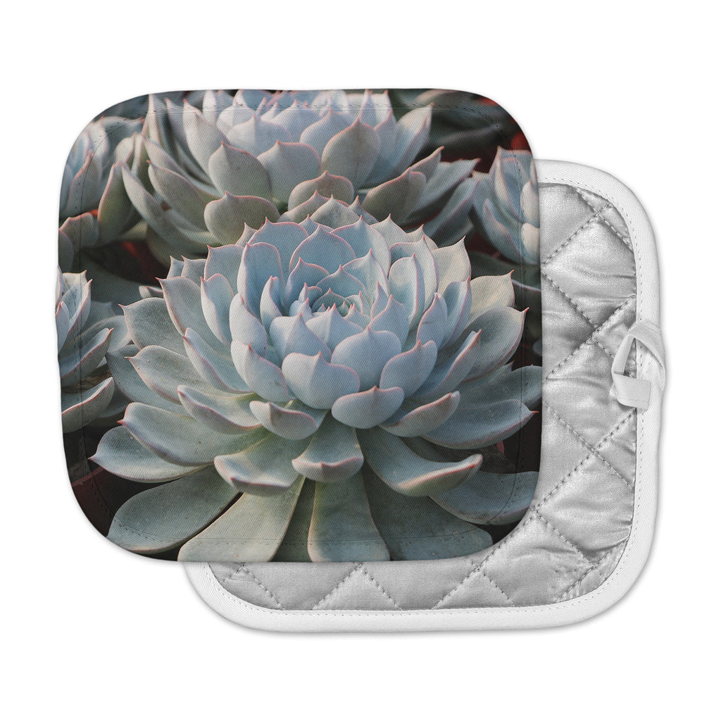 "Suzanne Carter ""Succulent Love "" Green Pink Pot Holder"