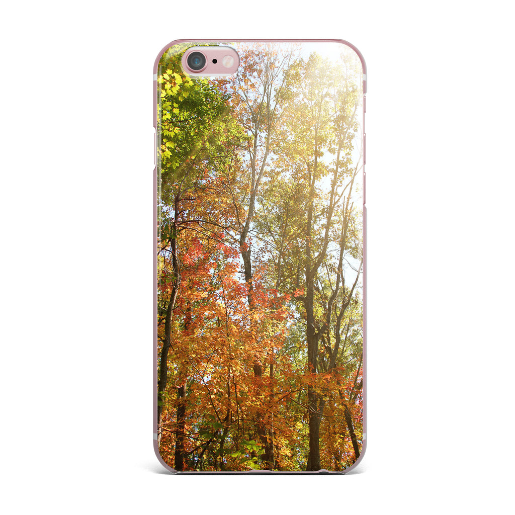 "Sylvia Coomes ""Autumn Trees 1"" Green Orange iPhone Case - KESS InHouse"