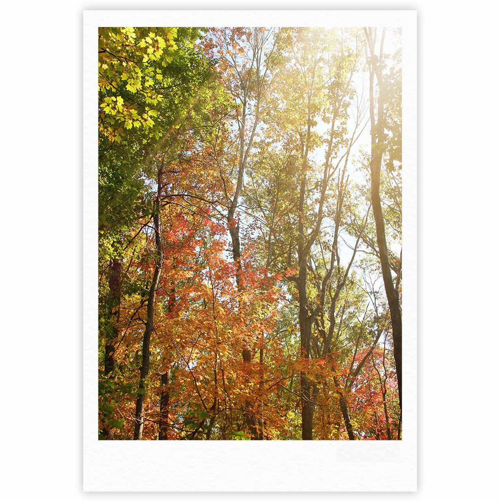 "Sylvia Coomes ""Autumn Trees 1"" Green Orange Fine Art Gallery Print - KESS InHouse"