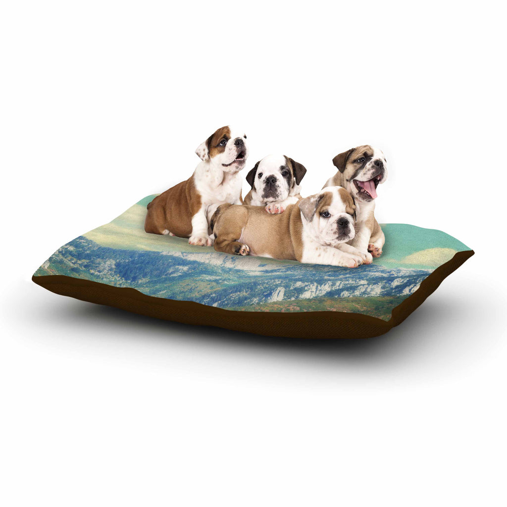 "Sylvia Coomes ""Utah Mountains"" Blue Nature Dog Bed - KESS InHouse  - 1"