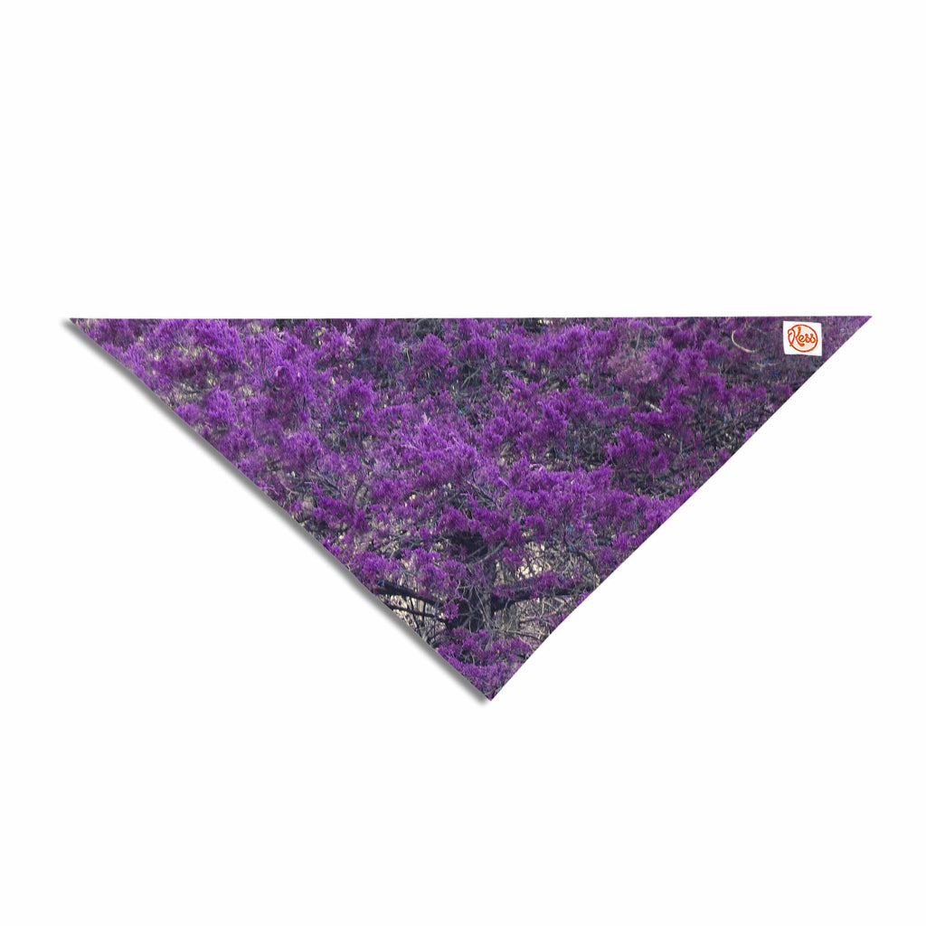 "Sylvia Coomes ""Purple Tree"" Purple Black Photography Pet Bandana"