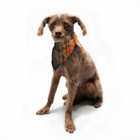"Steven Dix ""There's Fire"" Black Orange Painting Pet Bandana"