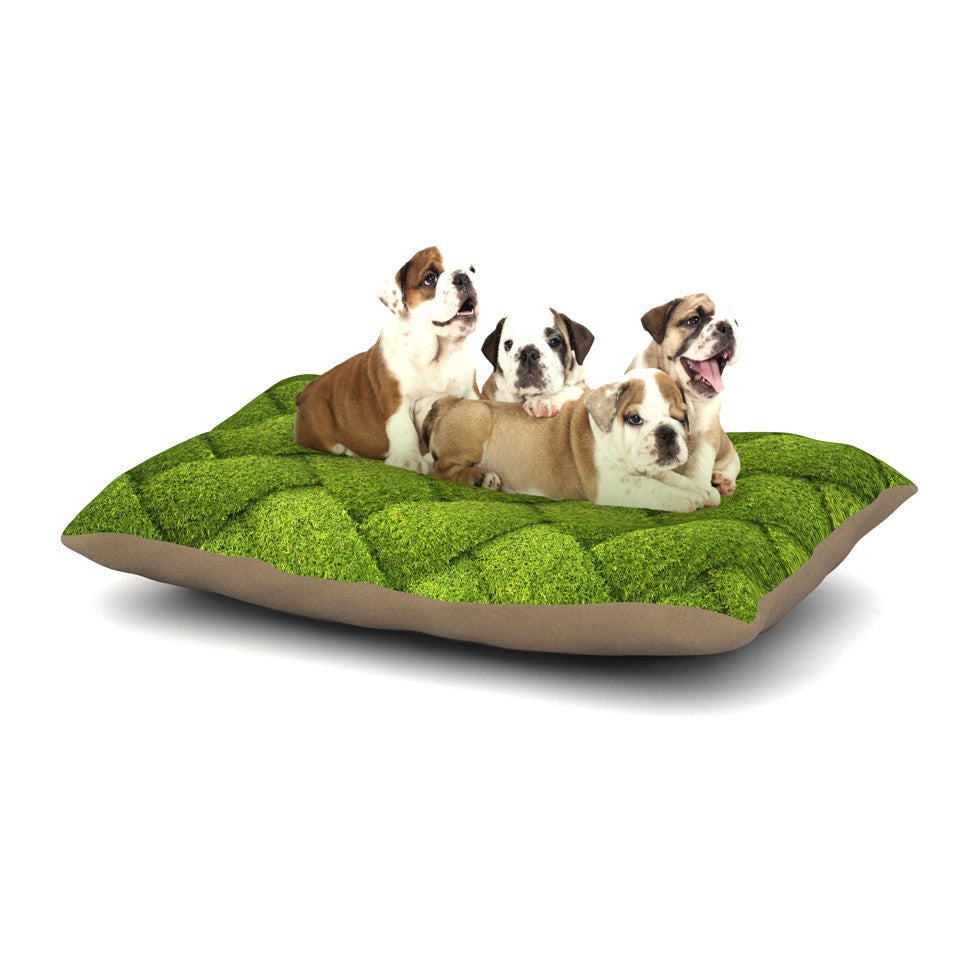 "Susan Sanders ""Ivy Basket"" Green Weave Dog Bed - KESS InHouse  - 1"