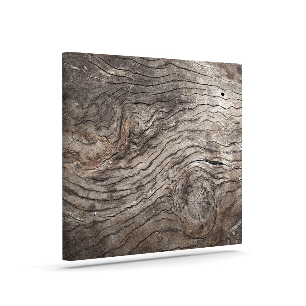 "Susan Sanders ""Tree Bark"" Brown Wooden Canvas Art - KESS InHouse  - 1"