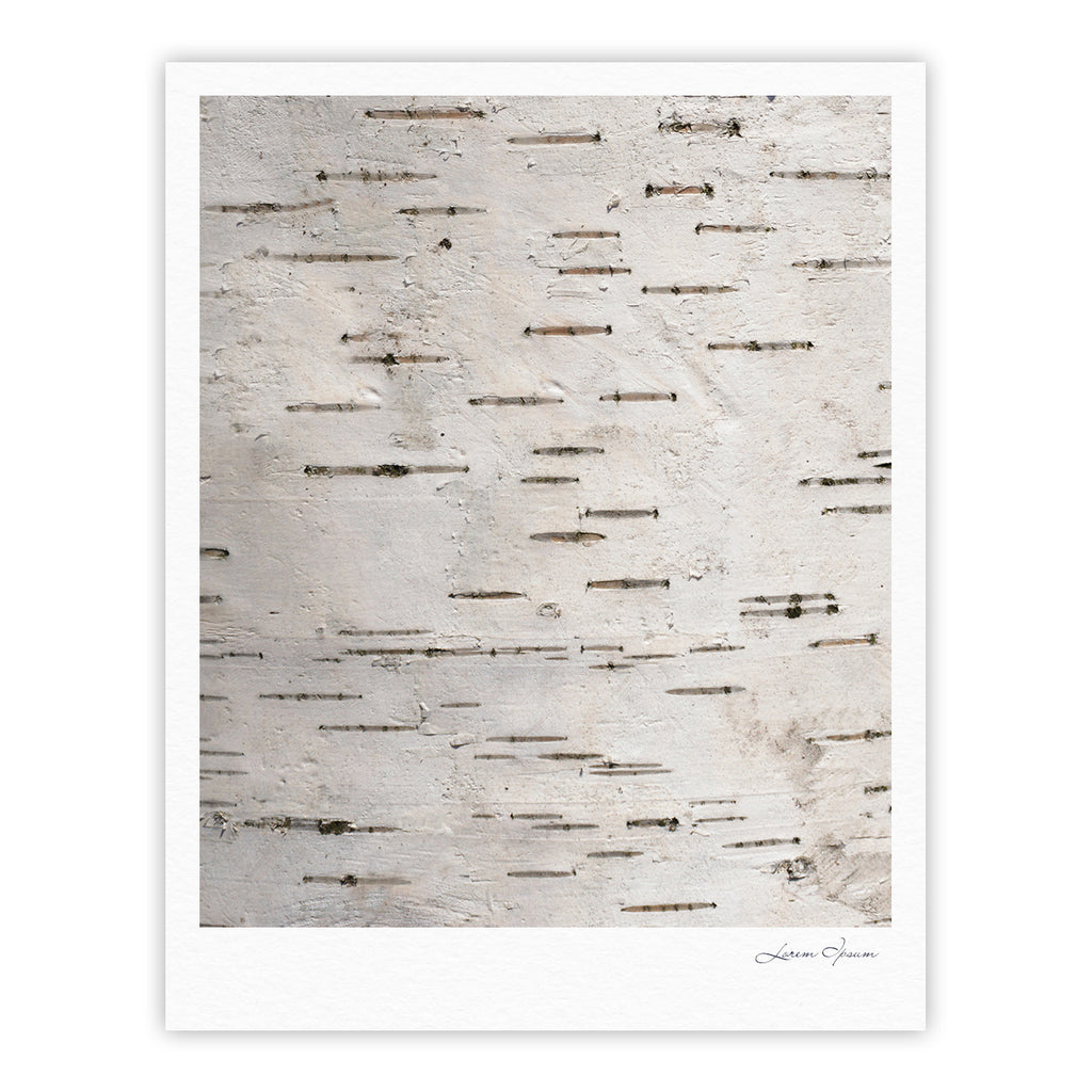 "Susan Sanders ""Painted Tree"" White Rustic Fine Art Gallery Print - KESS InHouse"