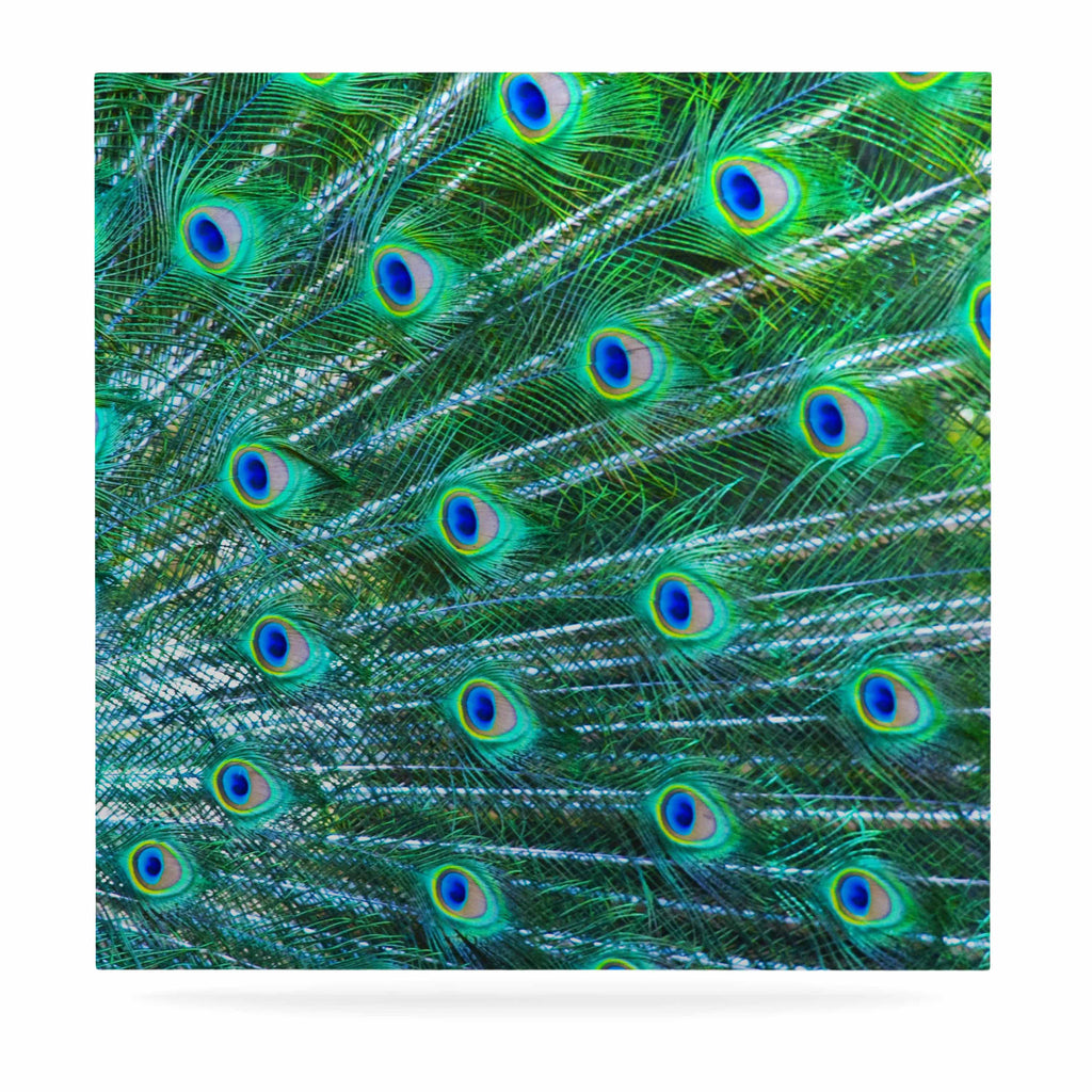 "Susan Sanders ""Teal Blue Peacock Feathers"" Photograph Luxe Square Panel - KESS InHouse  - 1"