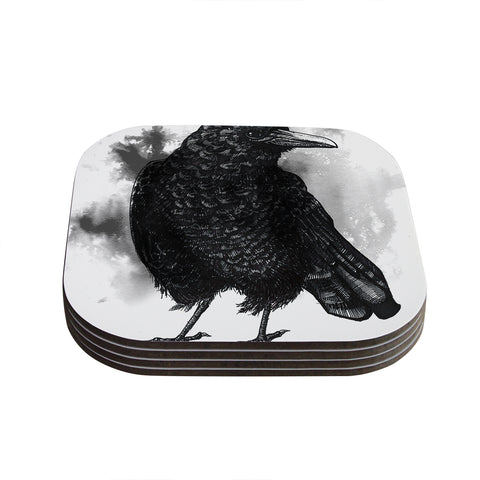 "Sophy Tuttle ""Crow"" Black White Coasters (Set of 4) - Outlet Item"