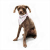 "Stephanie Vaeth ""Flamingos"" Pet Bandana - Outlet Item"