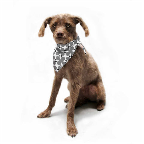 "Trebam ""Lepeza"" Gray White Modern Contemporary Digital Vector Pet Bandana"