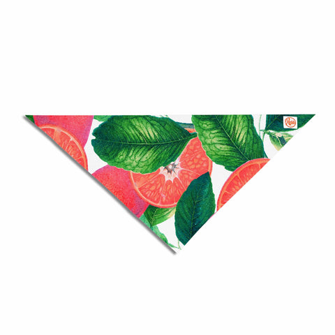 "83 Oranges ""Forbidden Fruit"" Coral Green Digital Pet Bandana"