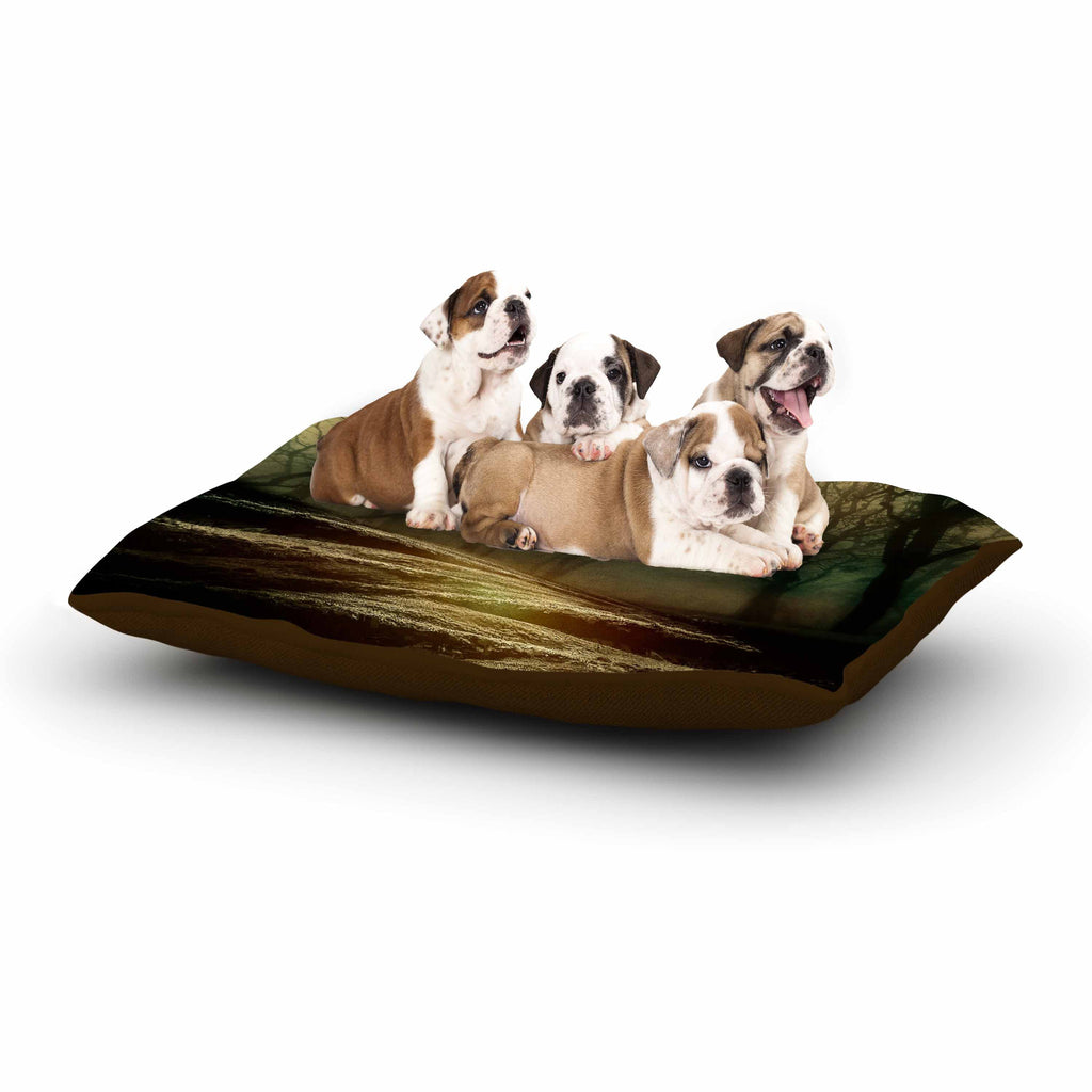 "Viviana Gonzalez ""From Small Beginnings And Big"" Green Nature Dog Bed - KESS InHouse  - 1"