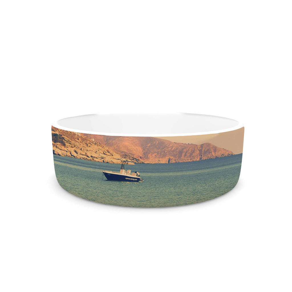 "Violet Hudson ""Drifting By"" Teal Brown Pet Bowl - KESS InHouse"