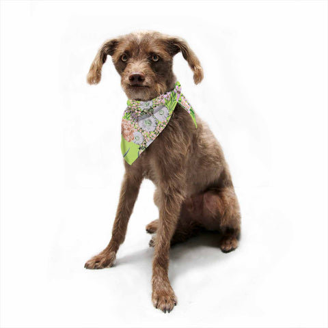 "Zala Farah ""Natural Beauty"" Green Floral Digital Pet Bandana"