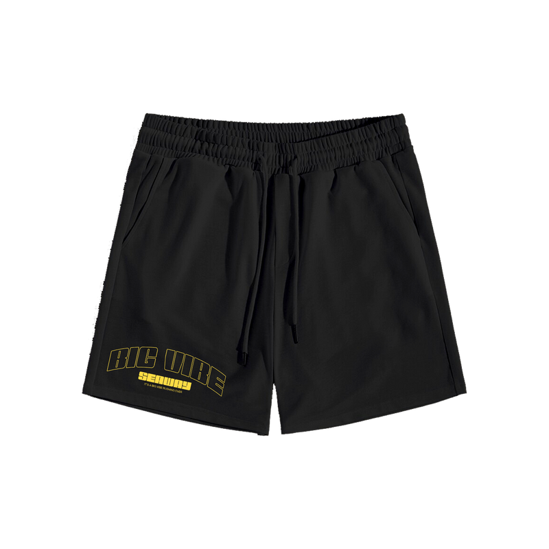 Seaway - Big Vibe Fleece Shorts