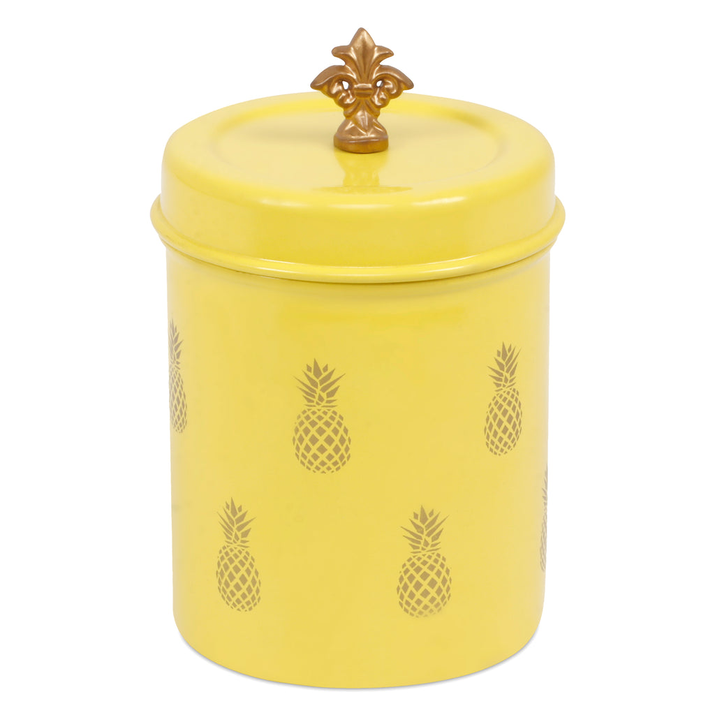 Elan Pineapple Canister Jar, Stainless Steel (500ml, Yellow)
