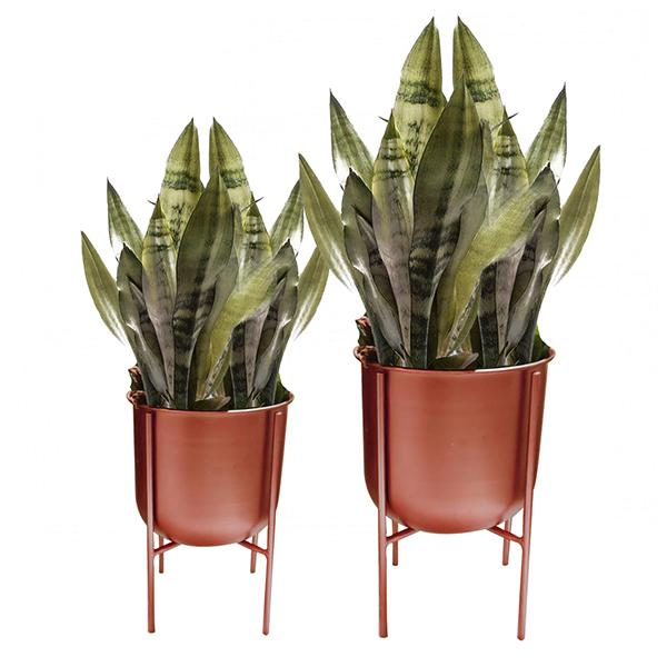 ELAN U Planters with Stand (Set of 2)