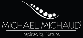 Shop the largest selection of Michael Michaud Jewellery on our official website!