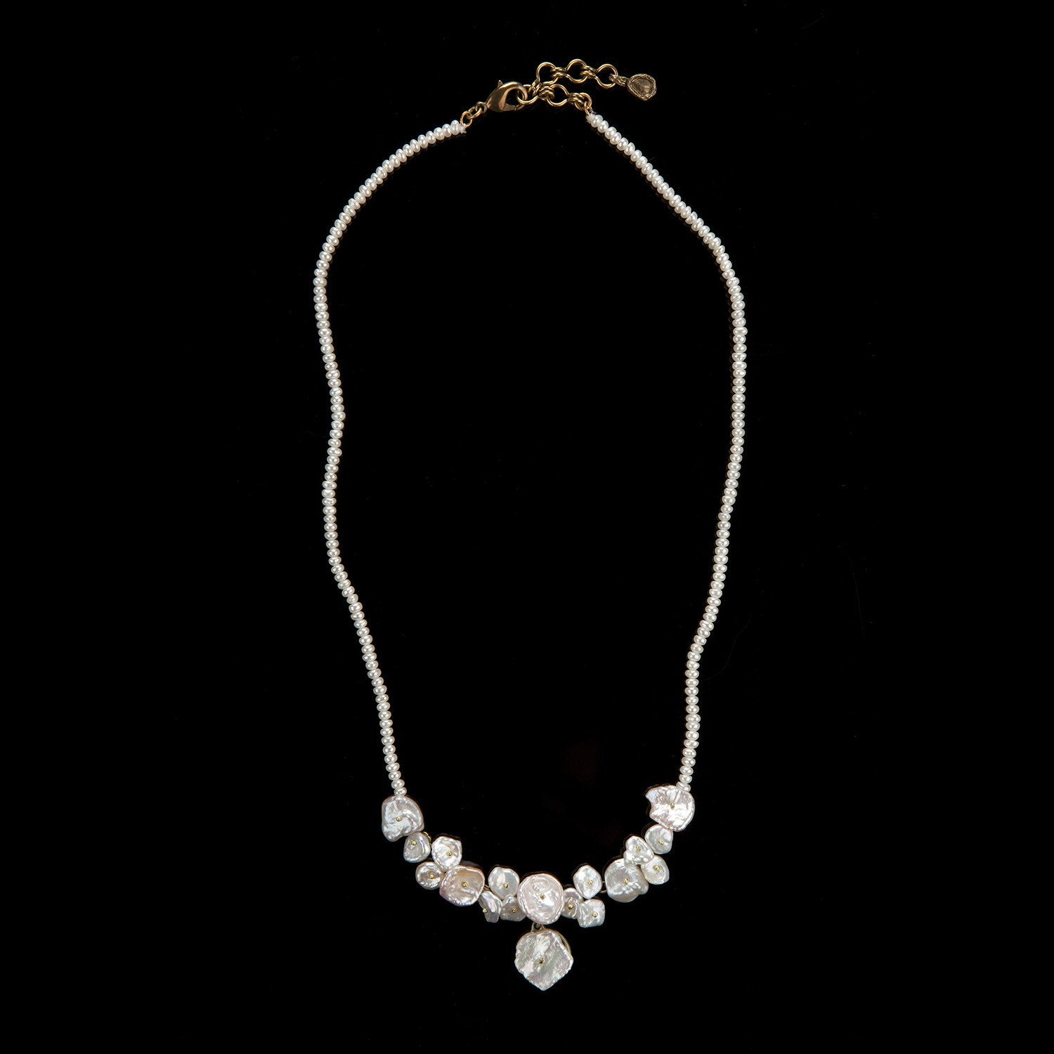 Silver Dollar Necklace - Petite Contour