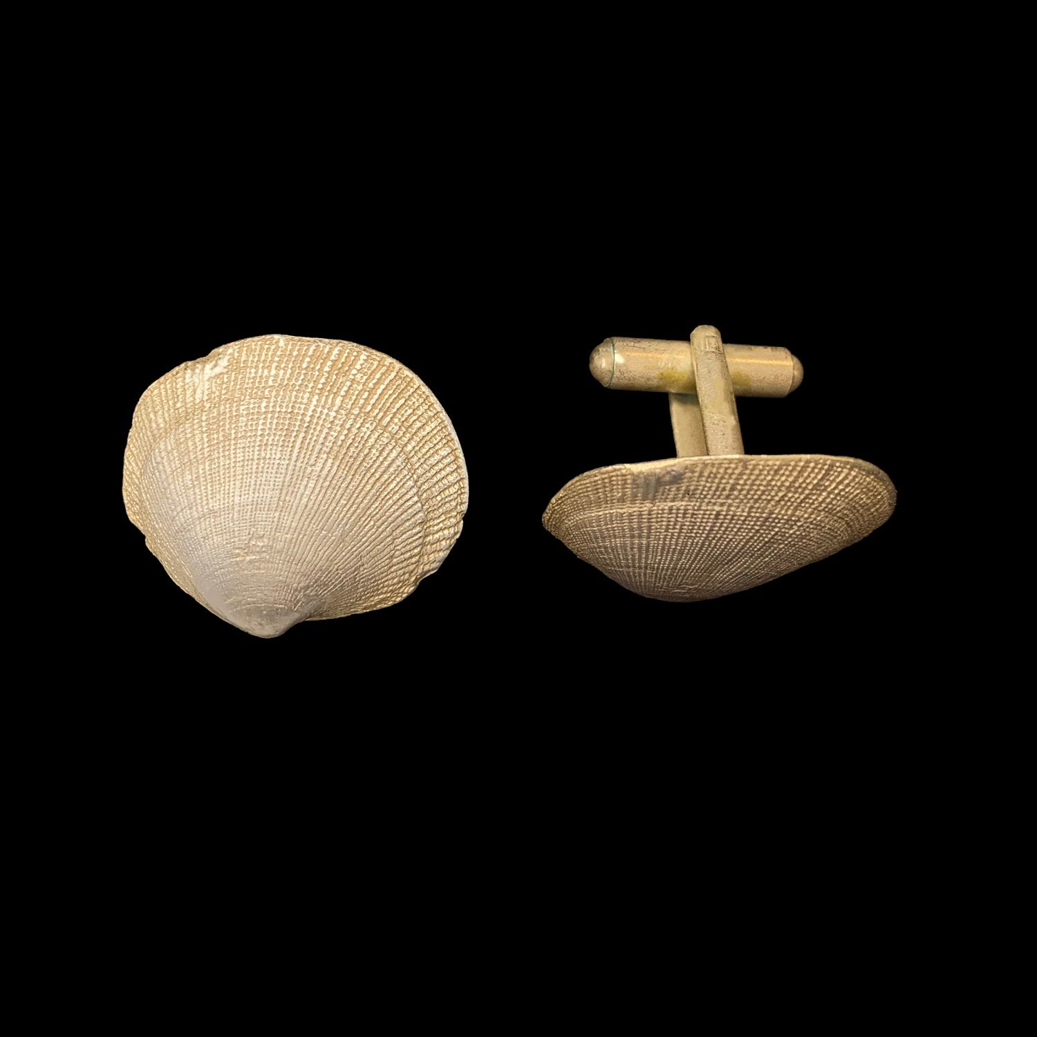 Beach Shells Cufflinks