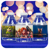 Pirate Fairy Water Bottle Wrappers