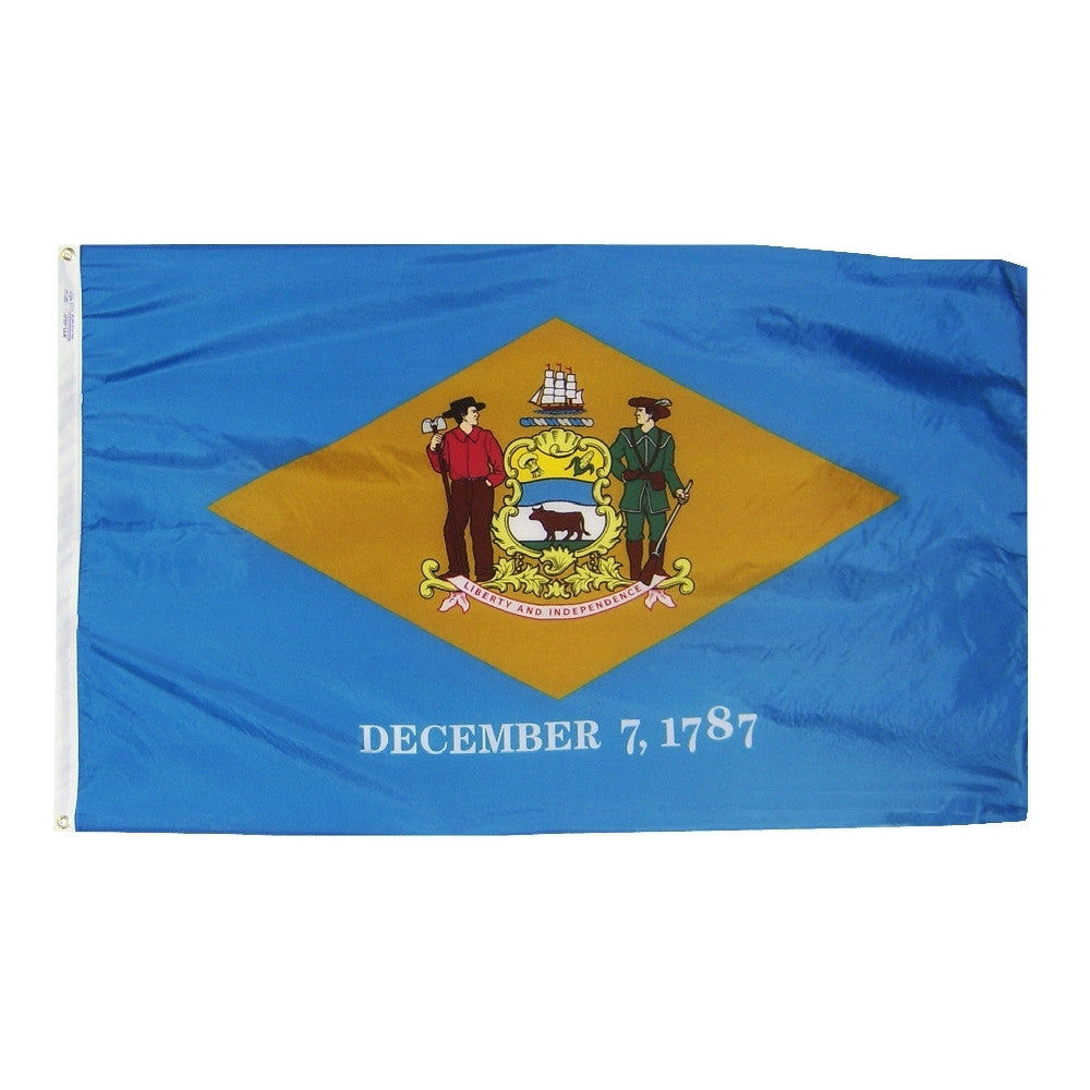 "Delaware Courtesy Flag 12"" x 18"" - ColorFastFlags 