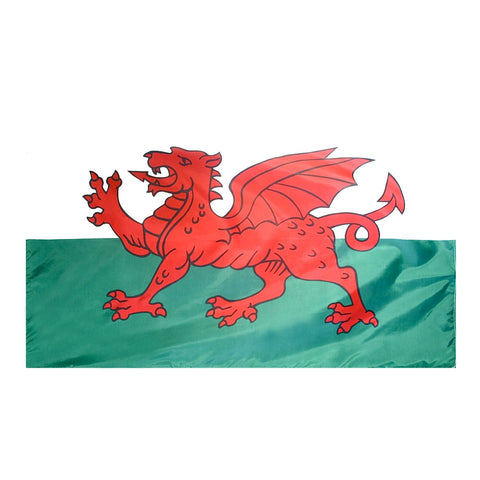 Wales Flag - ColorFastFlags | All the flags you'll ever need!