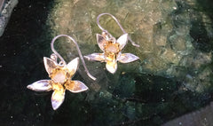 Spring Has Sprung Drop Earrings