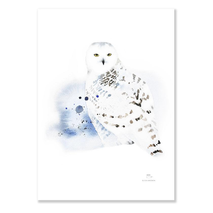 Ester Visual Snowy Owl poster from Rovaniemi Arctic circle watercolour